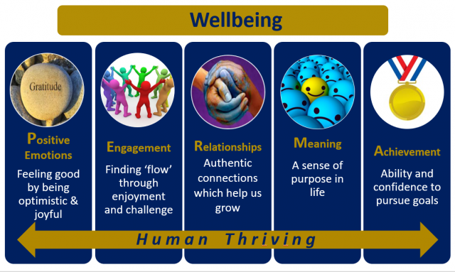 Wellbeing News – 31 October 2019